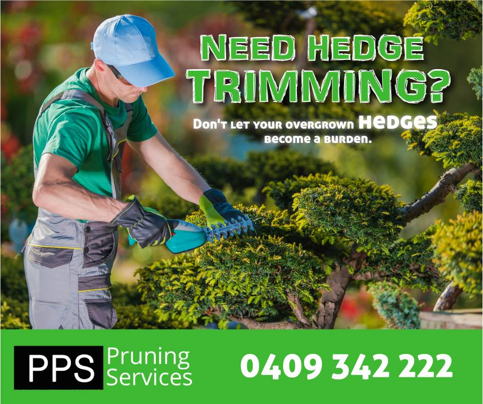 Hedge Shaping Services