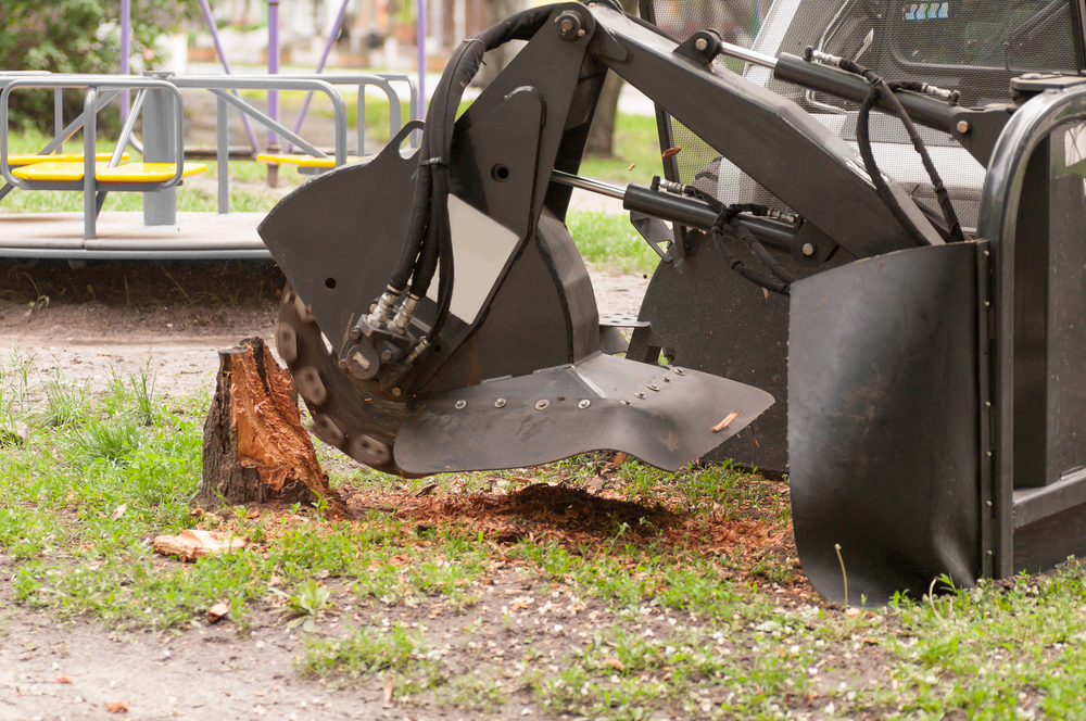 stump grinding and removal services perth